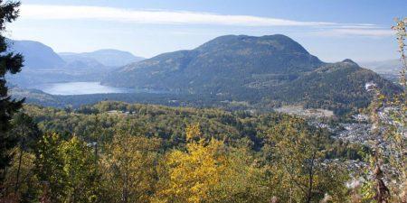 Chillwack Homes For Sale Listing - Dan McArthur Realtor